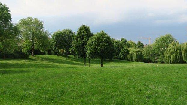 nippeser tälchen^1 - Ab in's Grüne: Das Nippeser Tälchen