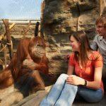 Zoom Zoo für Kinder 150x150 - Ausflugsziele im familiengutscheinbuch köln 2016