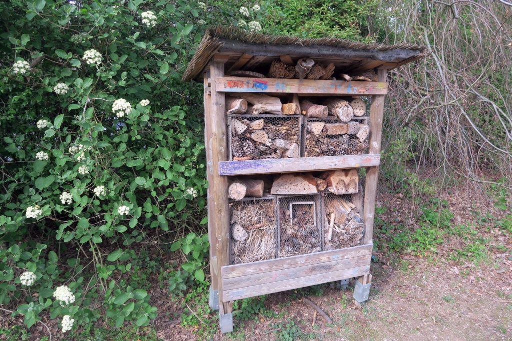 Forstbotanischer Garten 2 1024x683 - Forstbotanischer Garten mit tollem Spielplatz