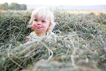 Fotolia 45072231 Subscription Monthly M - Urlaub auf dem Bauernhof