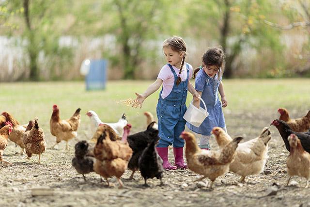Kind auf Bauernhof city baby münchen 9 - Schöne Bauernhöfe für Familien in Bayern und Österreich